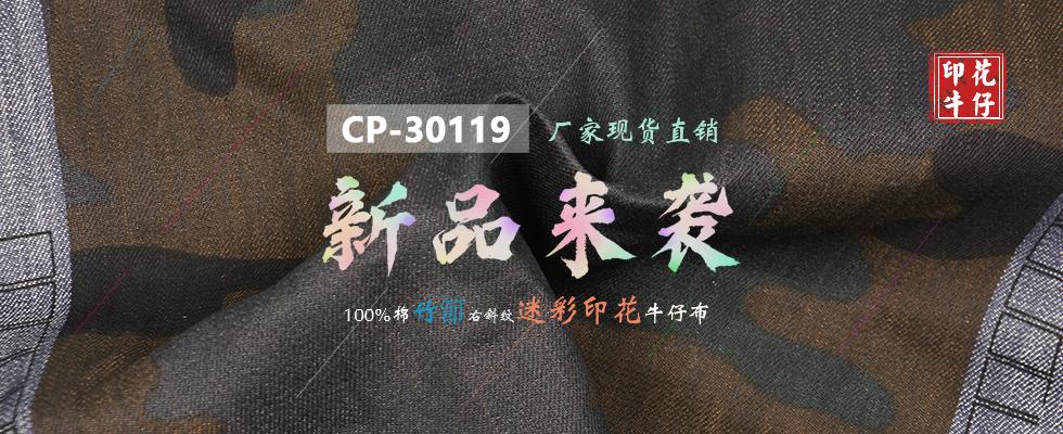 CP-30119